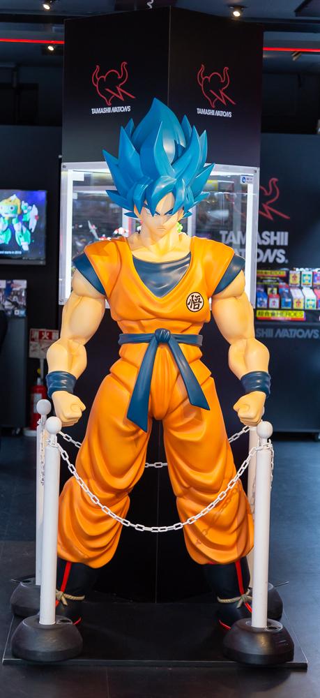 Photograph of Goku